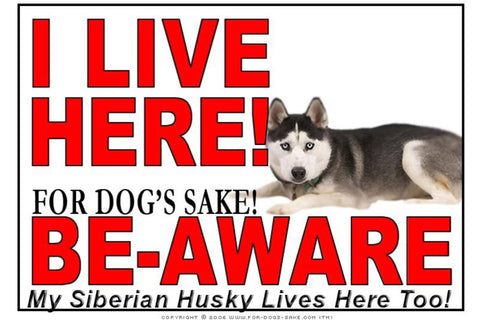 For Dogs Sake! Image1 / Adhesive Vinyl Siberian Husky I Live Here Sign