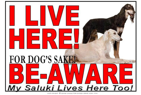 For Dogs Sake! Image1 / Adhesive Vinyl Saluki I Live Here Sign