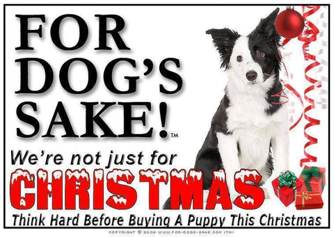 For Dogs Sake! Download Default Title Border Collie Christmas Message (Download)