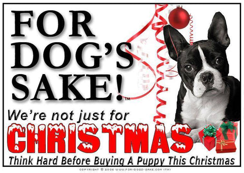 For Dogs Sake! Download Default Title Boston Terrier Christmas Message (Download)