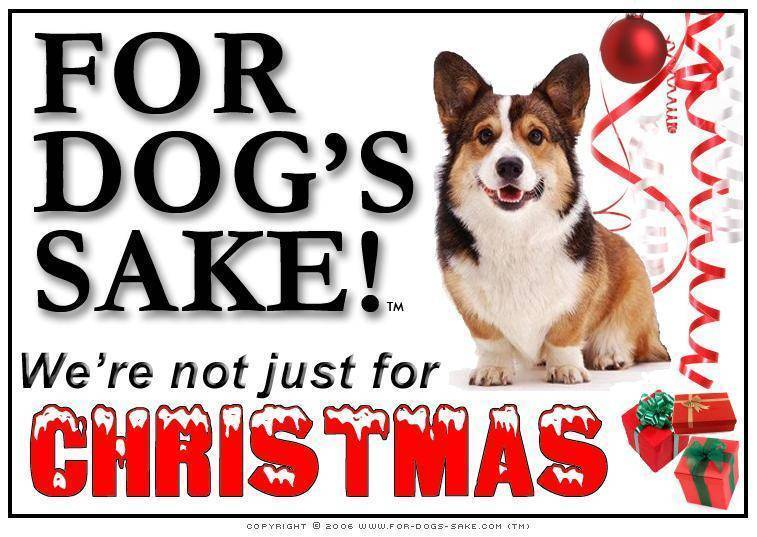 For Dogs Sake! Download Default Title Corgis Christmas Message (Download)