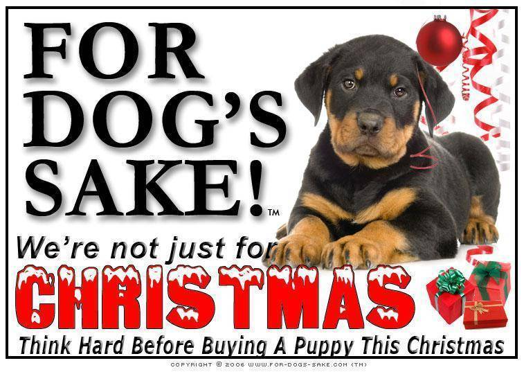 For Dogs Sake! Download Default Title Rottweiler Christmas Message (Download)