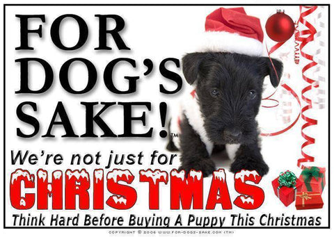For Dogs Sake! Download Default Title Scottish Terrier Christmas Message (Download)