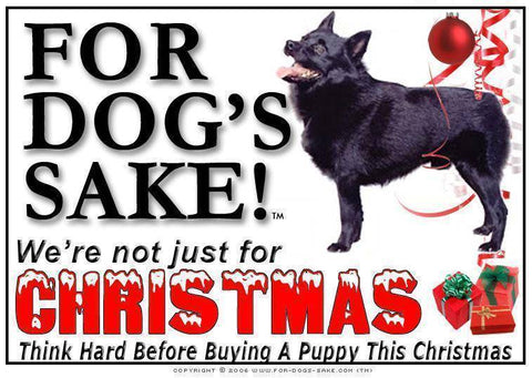 For Dogs Sake! Download Default Title Schipperke Christmas Message (Download)