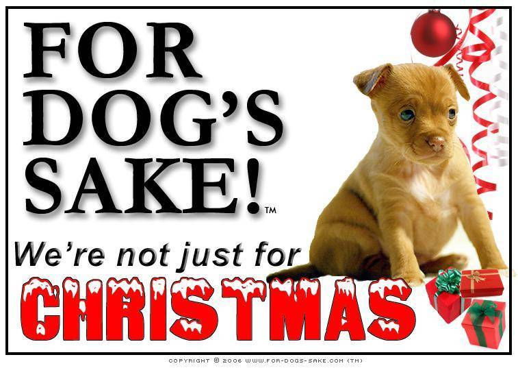 For Dogs Sake! Download Default Title Puppies Christmas Message (Download)