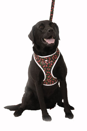 For Dogs Sake! Very Cherry Dog Softy Harness