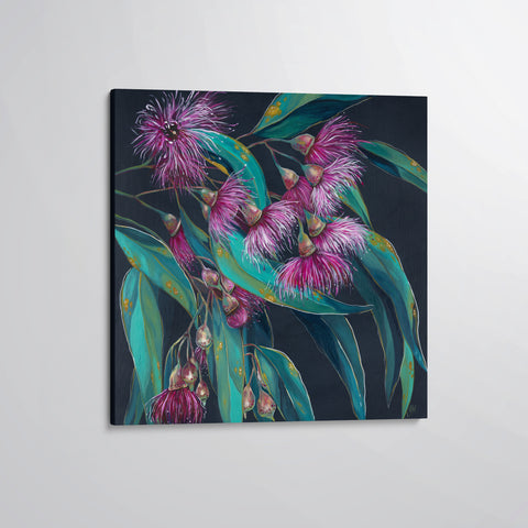 'Candy Blossoms' flowering gum canvas print