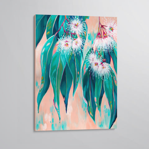 'Peachy' Flowering Gum canvas print