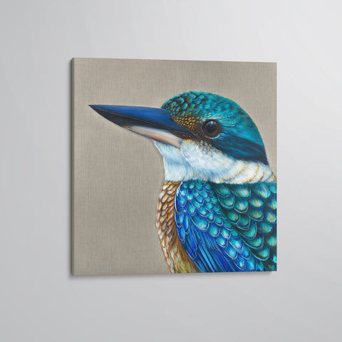 'Reef' The Sacred Kingfisher canvas print