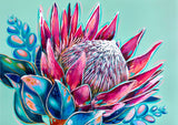 'True Colours' King Protea