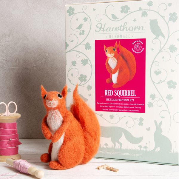 Red Squirrel Felting Kit - With Foam