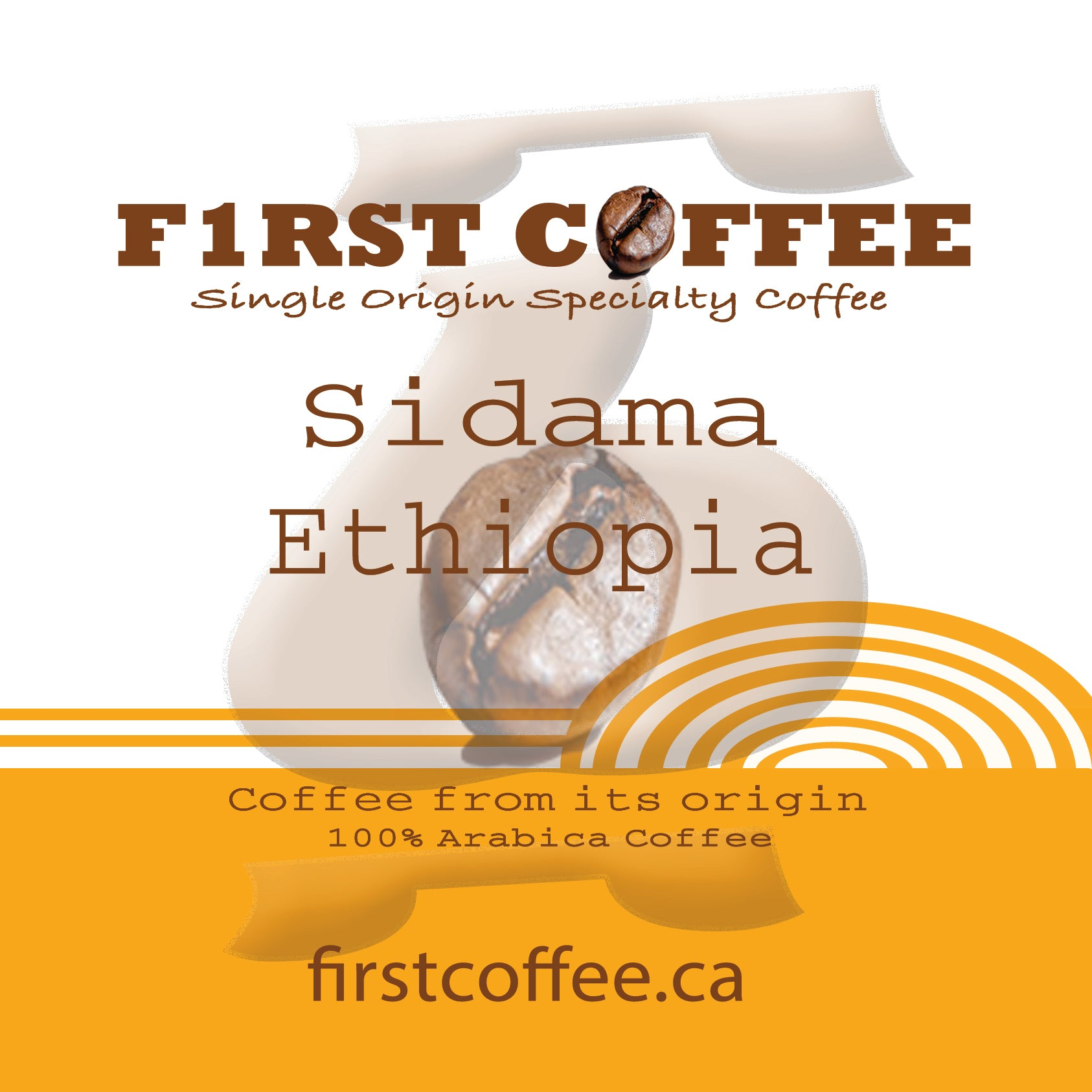 Sidama-Roasted Ethiopian Coffee