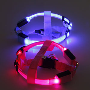 Nylon Pet Dog harness Cat Safety LED Flashing Light Harness LED Leash Rope Belt Collar Harness Vest for large dogs dropshopping