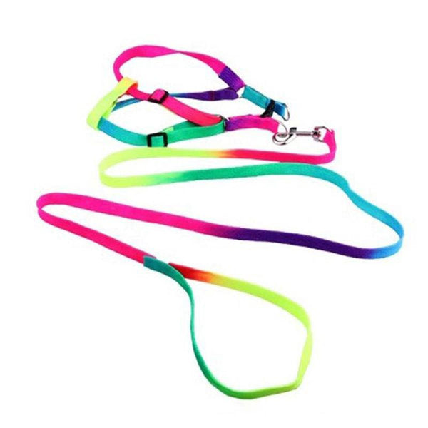 1.2m Rainbow Mascotas Pet Dog Puppy Leash Soft Walking Harness Lead