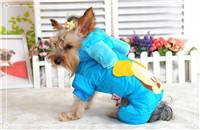 Baby Micky Pet Dog Clothes Winter Windproof Warm C219a Discount Warm Ski Jacket For Puppy Cats Chihuahua Poodle Yorkshire