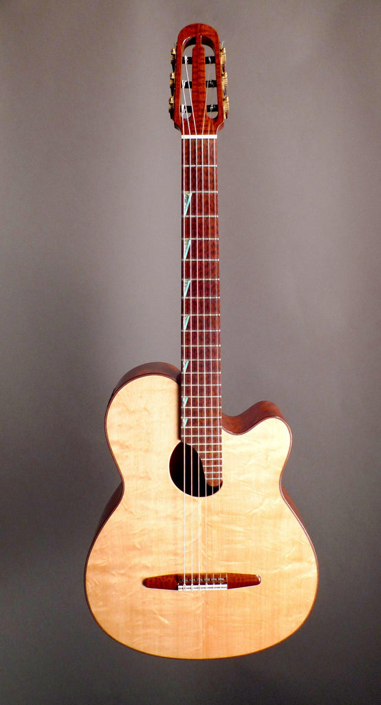 DG 2013 Paul McGill Super Ace Nylon Crossover Hybrid Classical Guitar image 6