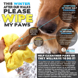 Protect Your Dog's Paws & The Environment