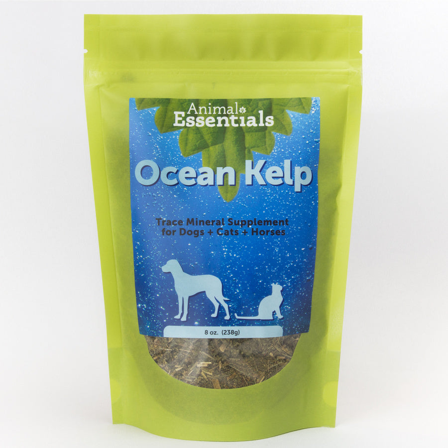 Animal Essentials Ocean Kelp