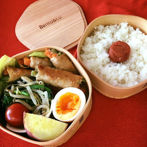 Magewappa Ume Odate Bent Wood Bento Box