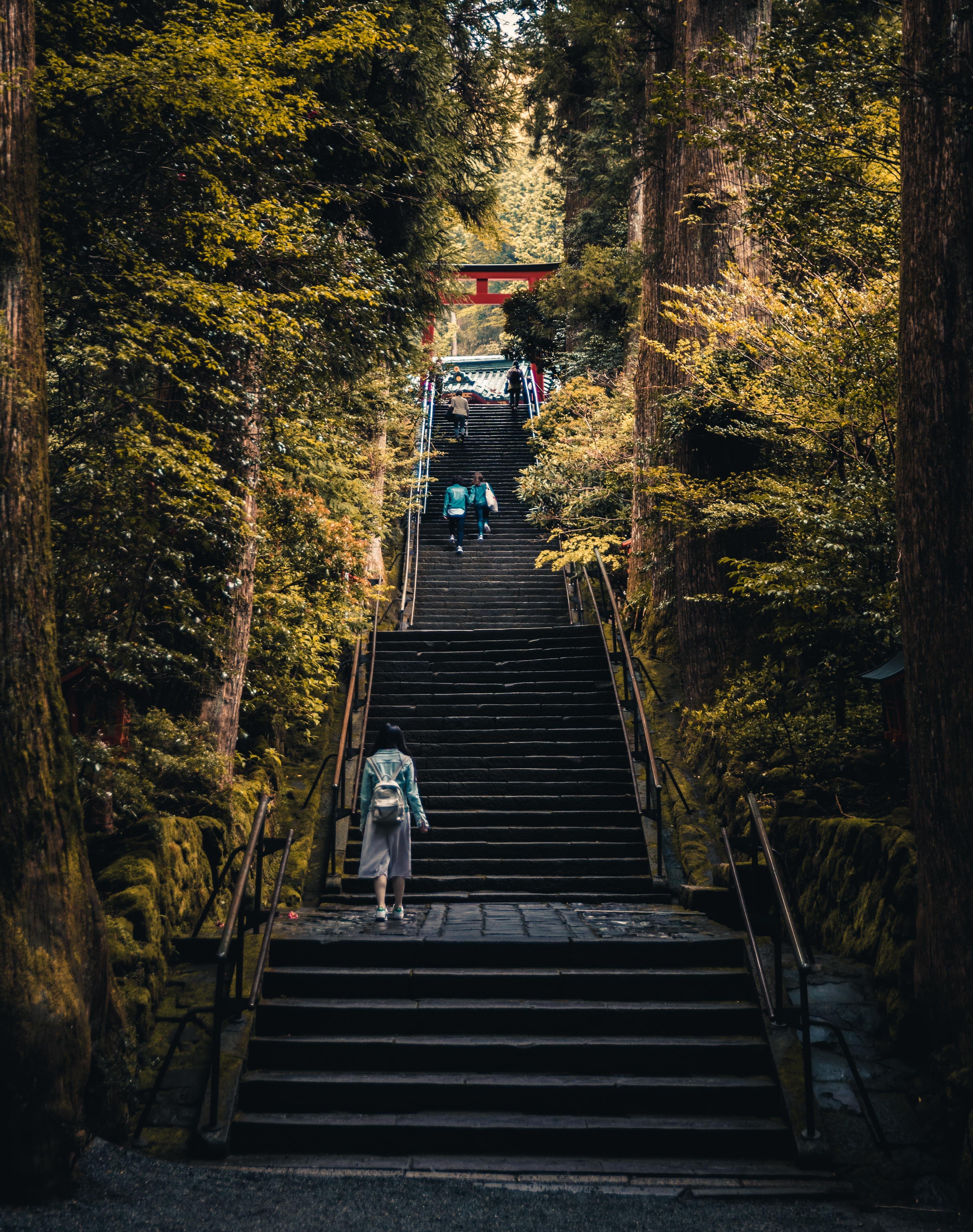 Four people walking up a staircause to a torii shrine