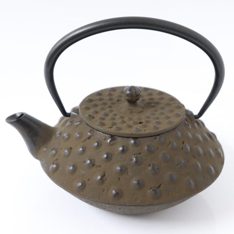Tetsubin Oval Kettle | Dots