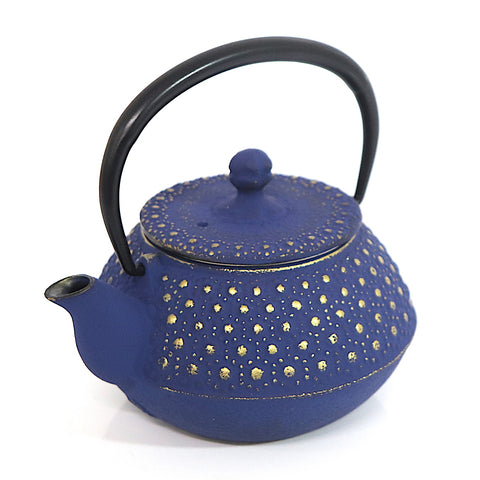 Tetsubin Oval Kettle | Stars in the Velvet Sky