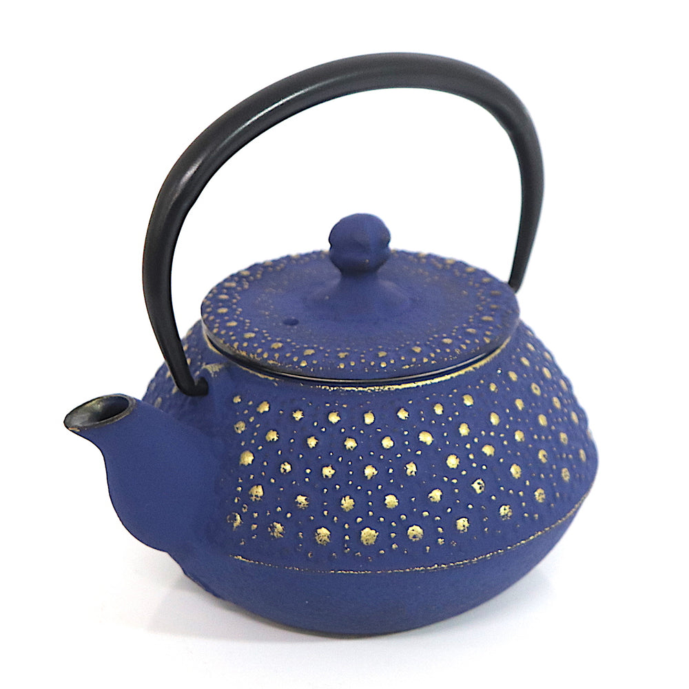 Tetsubin Oval Kettle | Stars in the Velvet Sky by Shoendo - Bento&co Japanese Bento Lunch Boxes and Kitchenware Specialists