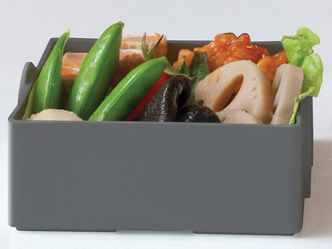 Maison de Lunch Red by Gel Cool - Bento&co Japanese Bento Lunch Boxes and Kitchenware Specialists
