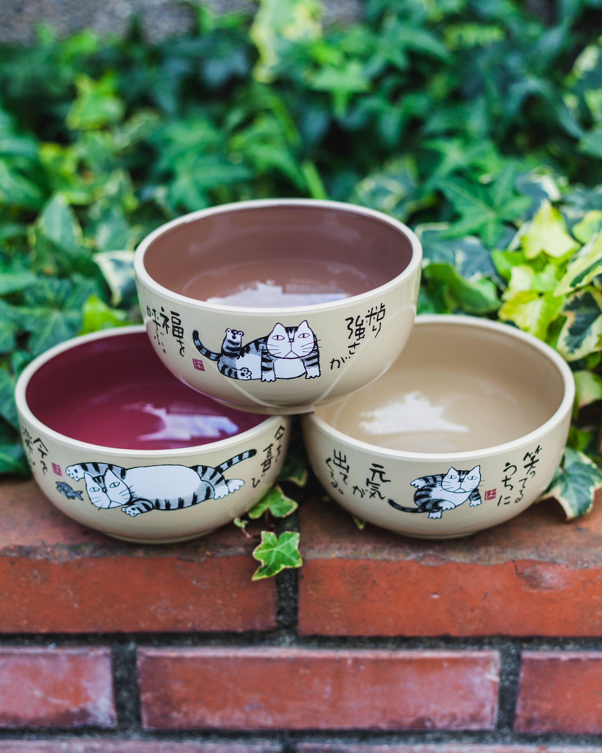 Okamoto Hajime Bowl 300mL Brown by Miyamoto Sangyo - Bento&co Japanese Bento Lunch Boxes and Kitchenware Specialists