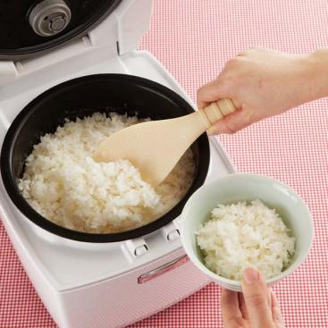 Cat's Paw Rice Paddle by Torune - Bento&co Japanese Bento Lunch Boxes and Kitchenware Specialists