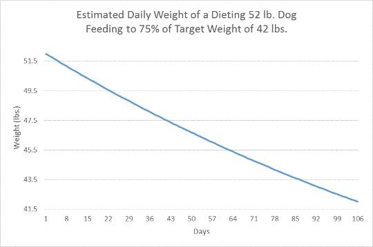 dog weight loss feeding