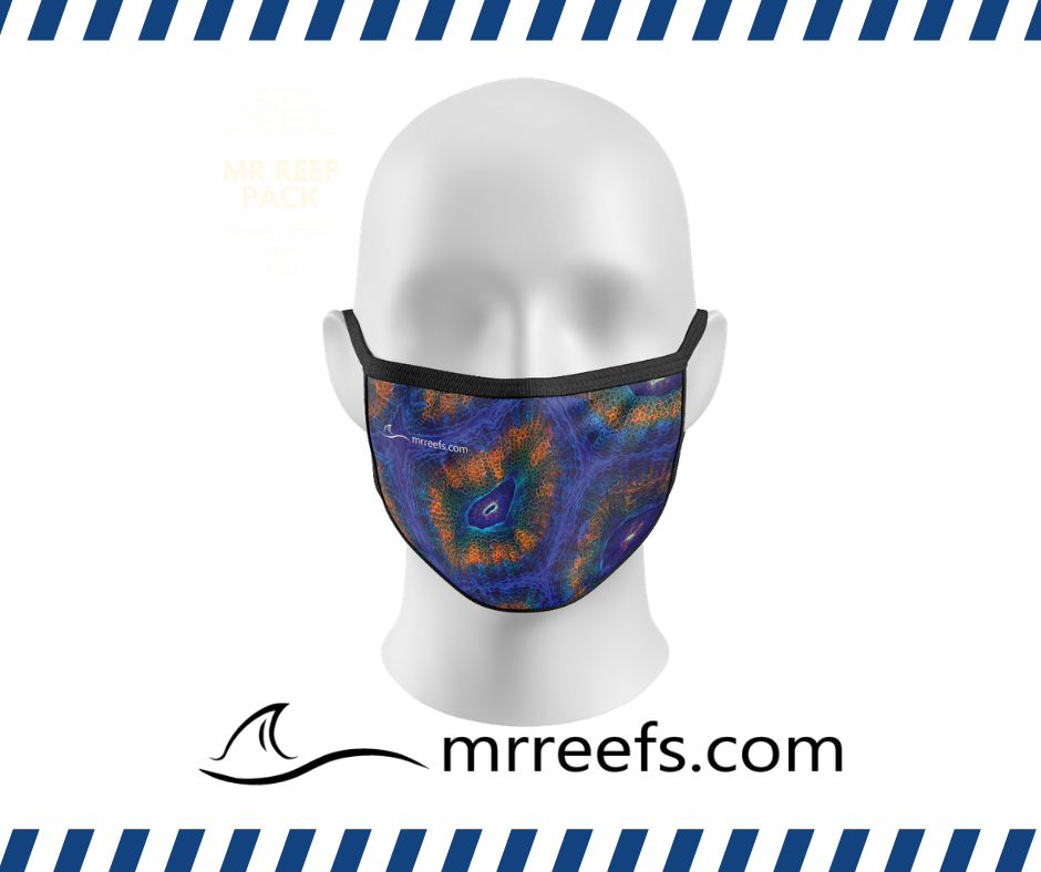 MR Reef Mask - Micromusa - NOW IN STOCK!