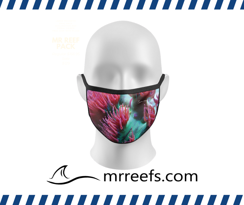MR Reef Mask - Elegance Coral - NOW IN STOCK!