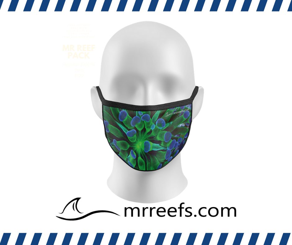 MR Reef Mask - Torch - NOW IN STOCK!