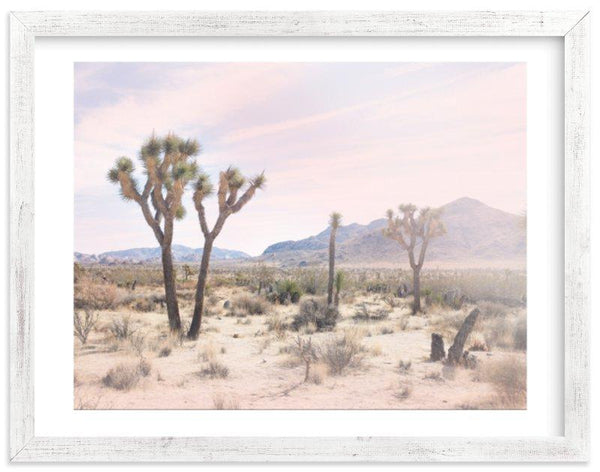 Joshua Tree Artwork