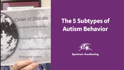 The 5 Subtypes of Autism Behavior: Live Q&A