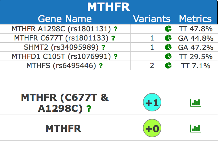 Genetics - SNP Test - MTHFR, COMT, MAO, and more!