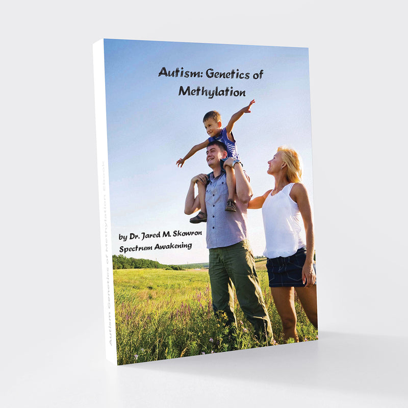Autism Genetics of Methylation Ebook