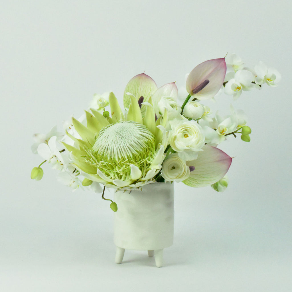 Arrangement includes white king protea, white mini phalaenopsis orchids, white mini anthurium, and white ranunculus.