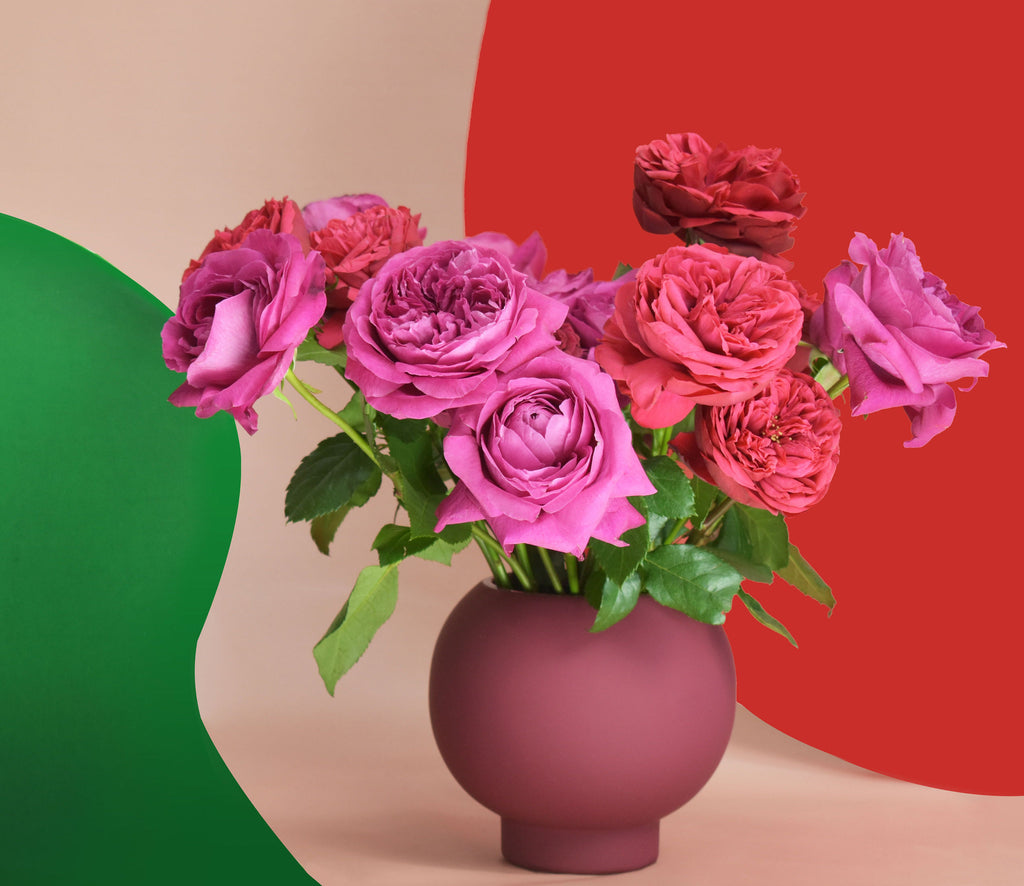 Arrangement includes mixed varieties of garden roses designed in a burgundy vase.