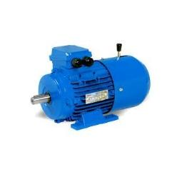 Industrial Motors & Transmission Products