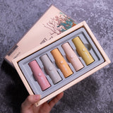 Wholesale 5pcs/Set Matte Long-lasting Mini Lipstick 10 twenty 2