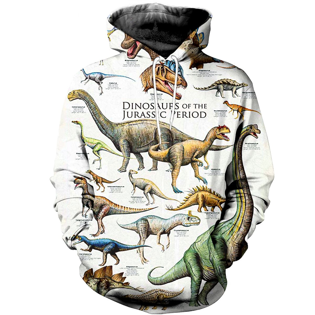 Dinosaurs of the Jurassic Period 3D Printed Hoodie