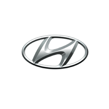 Load image into Gallery viewer, HYUNDAI/KIA AIRBAG MODULE RESET ON-LINE