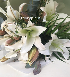 oriental lilly, tiger lilly delivery gold coast, tugun, bilinga, currumbin