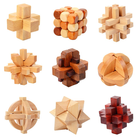 IQ Brain Teaser 3D Wooden Interlocking Puzzles