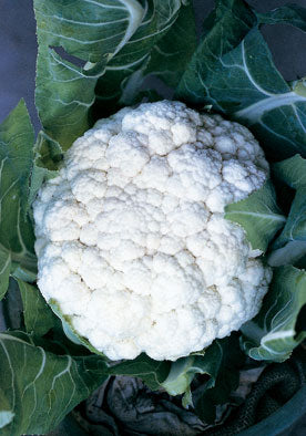 42 - Christmas  Cauliflower