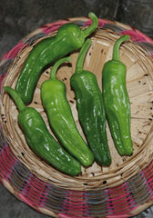 283 - Sweet Frying Peppers Green Peperone Friariello NON-GMO