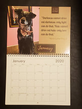 Load image into Gallery viewer, Mellow Mammals - 2020 Calendar for a Cause - 100% Profit Donated
