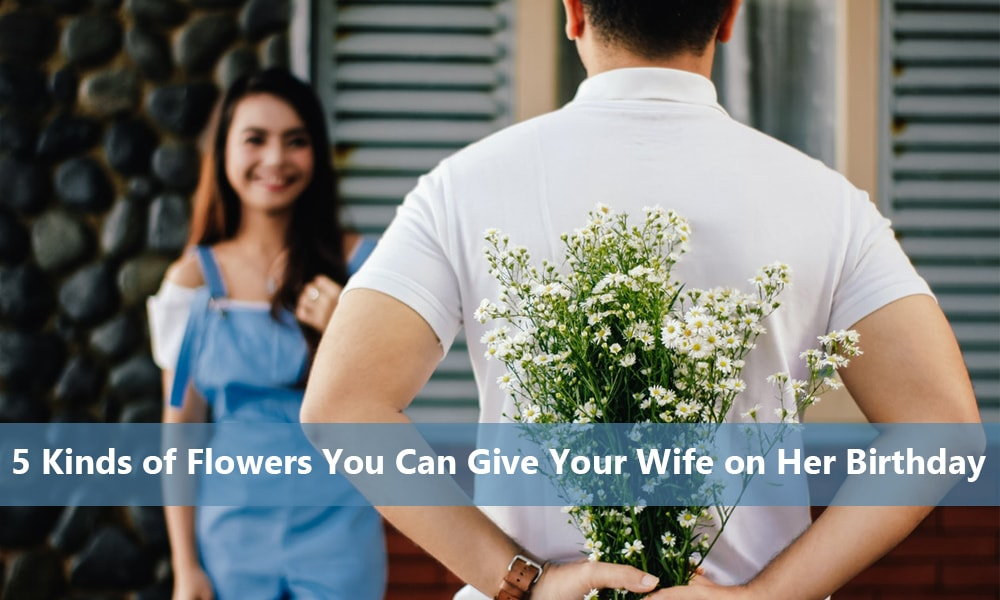 Flowers You Can Give Your Wife on Her Birthday
